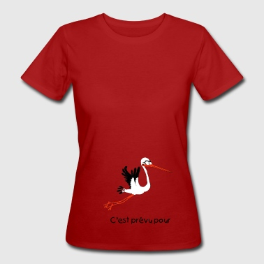Storch Kind Storch - Frauen Bio-T-Shirt