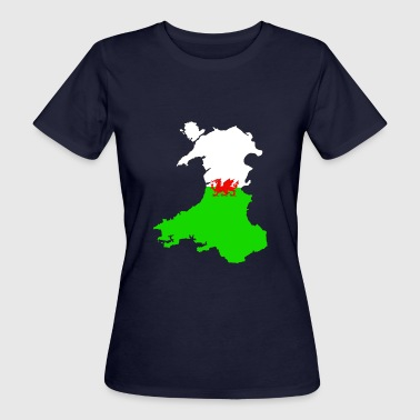 Double Exposure Wales Double Exposure - Women's Organic T-Shirt