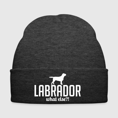 LABRADOR whatelse - Bonnet d'hiver