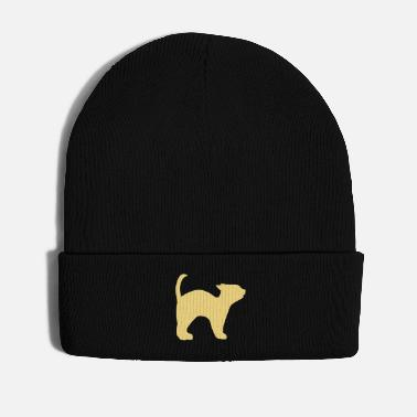 Domestic Cat cat3 - Winter Hat