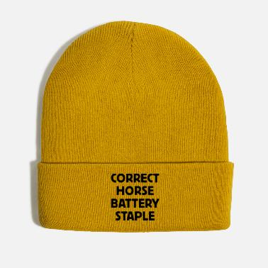 Reminder Correct Horse Battery Staple - Winter Hat