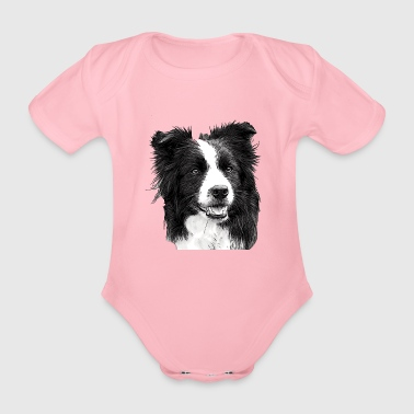 Border Collie - Baby Bio-Kurzarm-Body