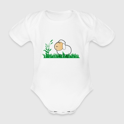 Funny sheep in green grass - Organic Short-sleeved Baby Bodysuit