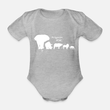 Animal The biggest five - Safari - Organic Short-sleeved Baby Bodysuit
