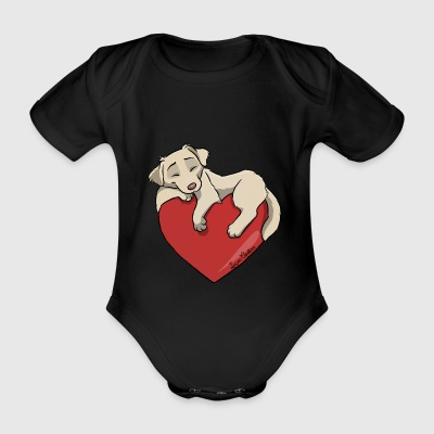 Hvit Golden Retriever - Økologisk kortermet baby-body