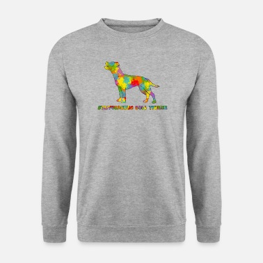Staff Bull Staffie Multicolore - Sweat-shirt Homme
