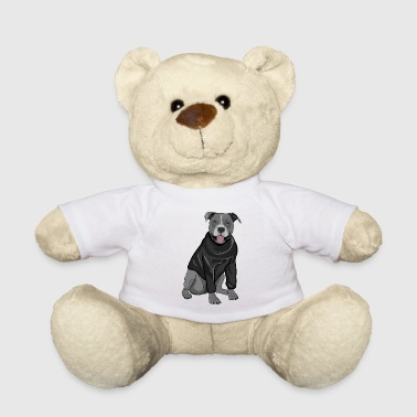 Cute dog sweater pullover Stafford gift idea - Teddy Bear