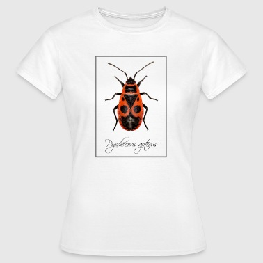 Pyrrhocoris apterus - Women's T-Shirt