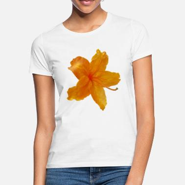 Blüte Orange Bluete - Frauen T-Shirt