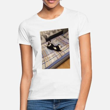 Male cat - Women's T-Shirt