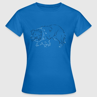 Border Collie - Dame-T-shirt
