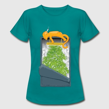 Hydroponic Chat cannabis - T-shirt Femme
