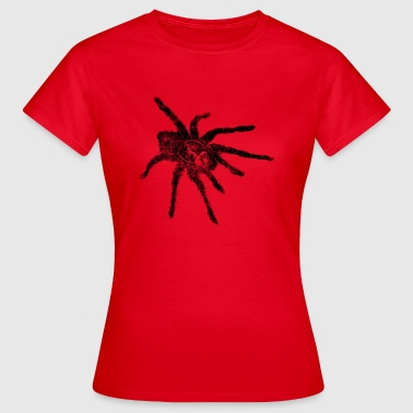 Bird spider Tarantula Arachnids Spider spiders - Women's T-Shirt
