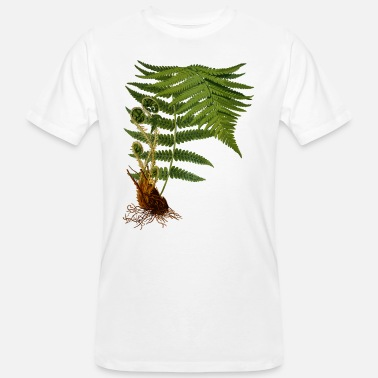Botanical Fern illustration - Men's Organic T-Shirt