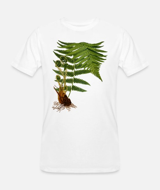 Rural T-Shirts - Fern illustration - Men's Organic T-Shirt white