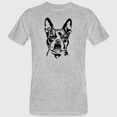 BOSTON TERRIER - T-shirt bio Homme