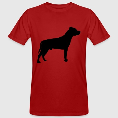 American Staffordshire Terrier - T-shirt bio Homme