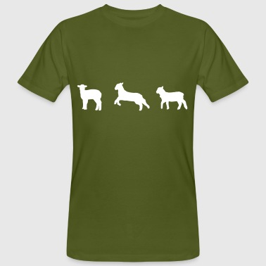 sheep, lamb - Men's Organic T-shirt