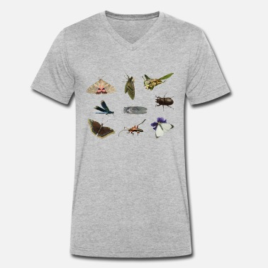 Insect insects - Men's Organic V-Neck T-Shirt