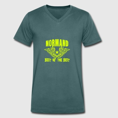 Normande normand breton best of the best - T-shirt bio col V Stanley & Stella Homme