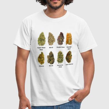 Cannabis 8 Buds of Mary Jane - Männer T-Shirt
