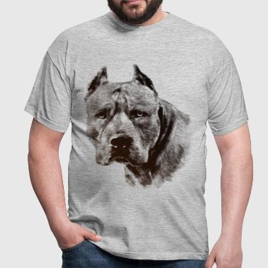 American Pit Bull Terrier - Men's T-Shirt