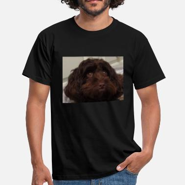 Cockapoo Lover Looking at you. - Men's T-Shirt