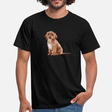 Cockapoo Evolution Of Cockapooss - Men's T-Shirt