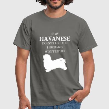 Havanese - If my Havanese doesn't like you - Men's T-Shirt