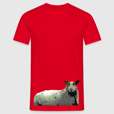 Badger Sheep - Men's T-Shirt