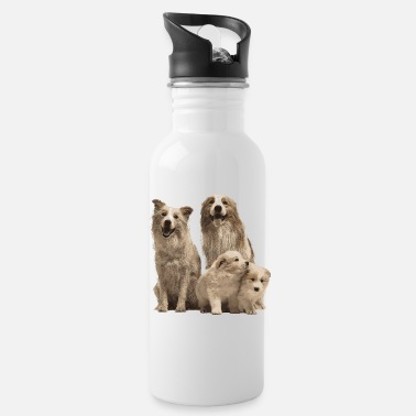 Boder Collie Family - Water Bottle