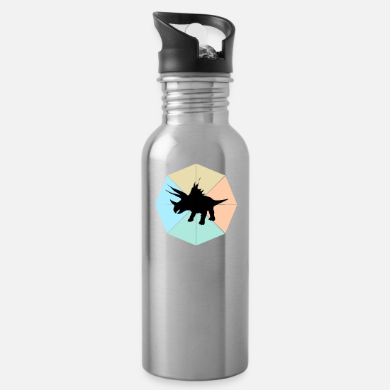 Kids Mugs & Drinkware - dinosaur - Water Bottle silver