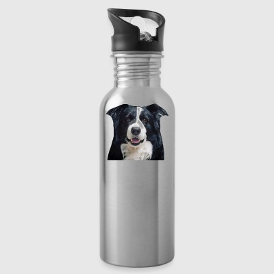 Border Collie - Cantimplora