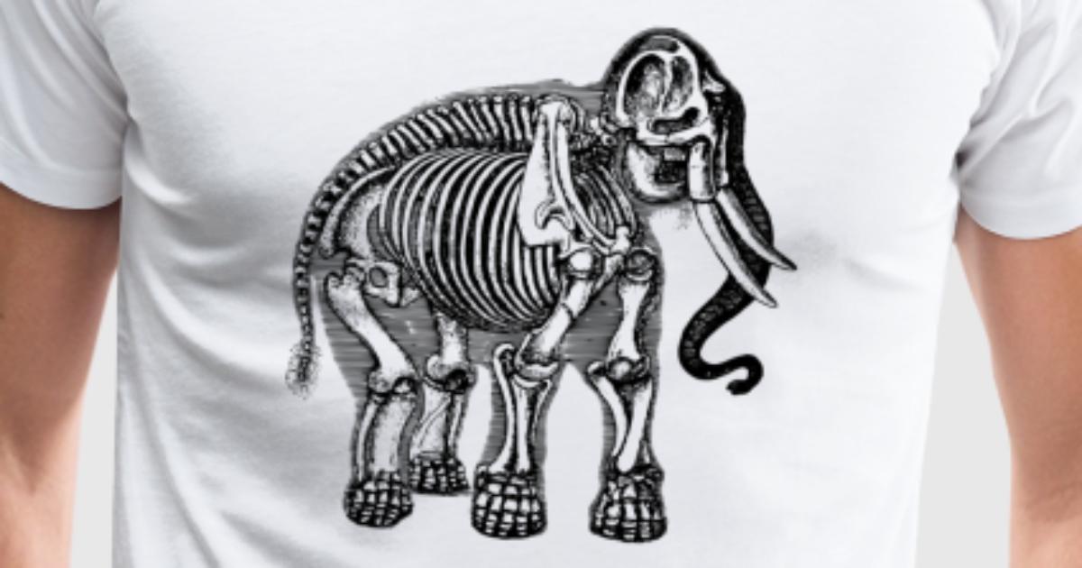 Elefant Anatomie von EigenbroetlerDesigns   Spreadshirt