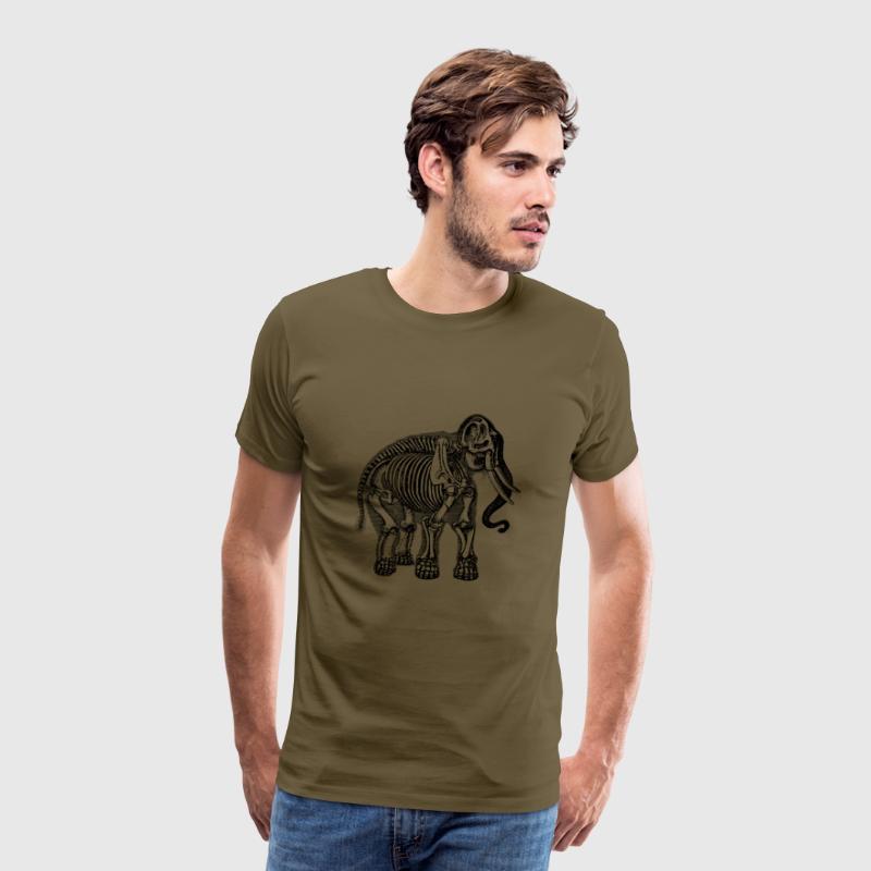 Anatomía de elefante por EigenbroetlerDesigns | Spreadshirt