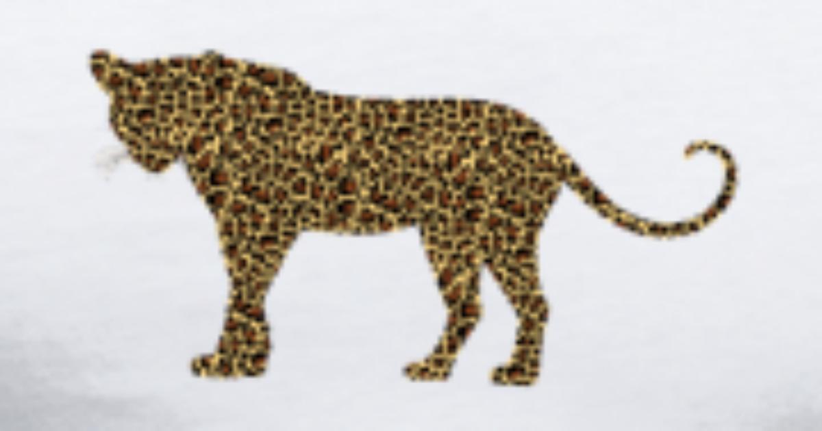 Gepard Kot Lampart Jaguar Ocelot Gepard Wildcat53 Premium Koszulka