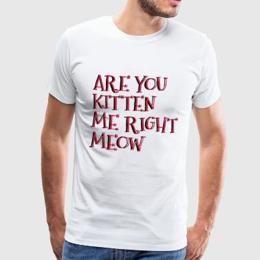 Are You Kitten Me Right Meow - Mannen Premium T-shirt
