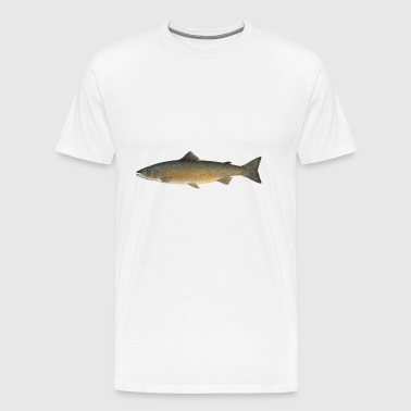 Atlantic salmon - Men's Premium T-Shirt