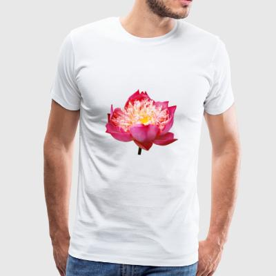 lotus flowers flower garden garden - Men's Premium T-Shirt