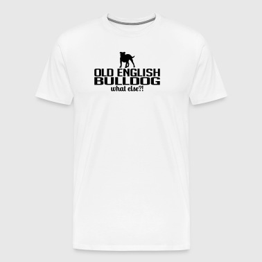 OLD ENGLISH BULLDOG what else - Männer Premium T-Shirt