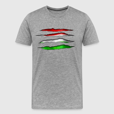 Hungary Torn out 003 AllroundDesigns - Men's Premium T-Shirt