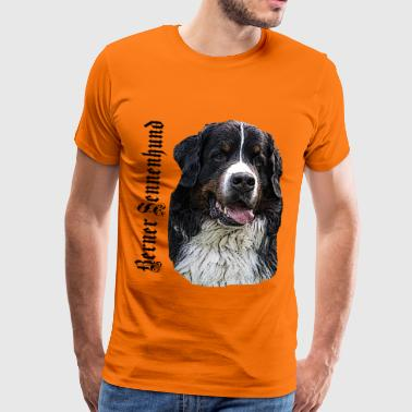 Berner sennenhund, berg förföljer, Toy Group Breed, - Premium-T-shirt herr