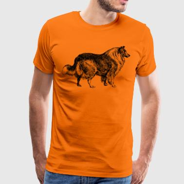collie - Mannen Premium T-shirt