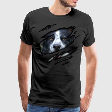 Border Collie i meg - Premium T-skjorte for menn