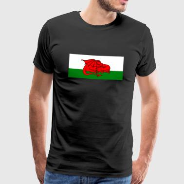 Sleeping Welsh Dragon - Men's Premium T-Shirt