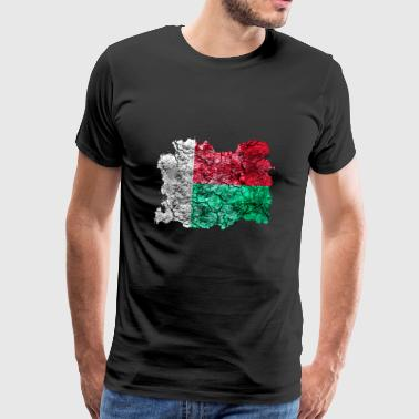 Madagascar vintage flag - Men's Premium T-Shirt