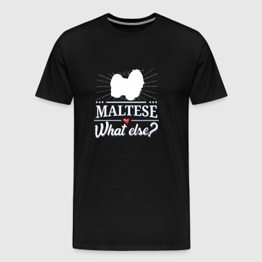Maltese what else? maltese - Men's Premium T-Shirt