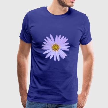 aster asters blomst have blomster haven - Herre premium T-shirt