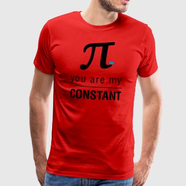 You are my constant - Mannen Premium T-shirt