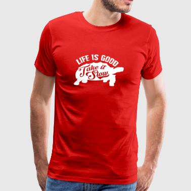 Drôle Take It Slow tortue T-shirt cadeau - T-shirt Premium Homme